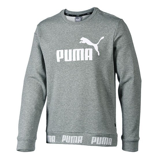 Puma Sweatshirt Amplified TR Grau
