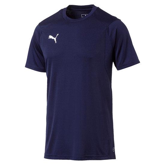 Puma Training T-Shirt LIGA Blau