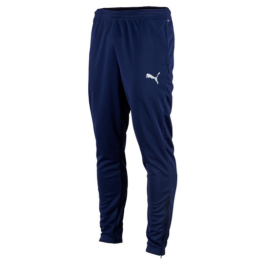 Puma Trainingshose TEAM RISE Blau