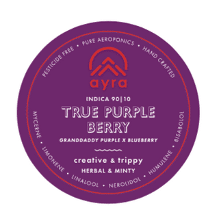 True Purple Berry Product Image