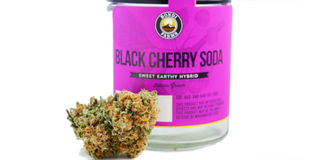 Black Cherry Soda Product Image