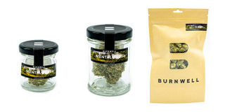 Mental Glue Baby Buds Product Image