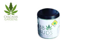 Bluniverse BB Buds Product Image