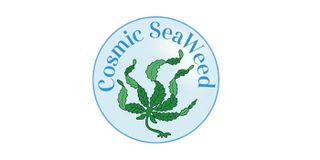 Cosmic Remedy Topical Salve Product Image