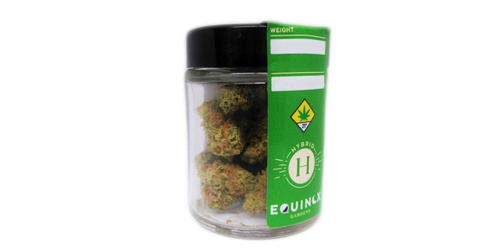 Blueberry Cookies Product Image
