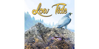 Low Tide Product Image