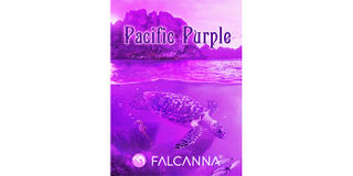 Pacific Purple Product Image