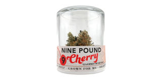 Nine Pound Cherry Product Image