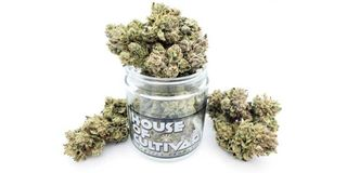 Sour Face Product Image