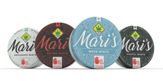 Peppermint CBD Replenish Mints Product Image