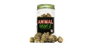 Platinum Line Animal Mintz Product Image