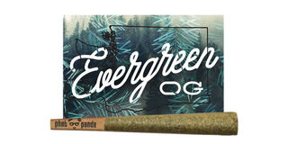 Evergreen OG Product Image