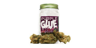 Purple Glue Product Image