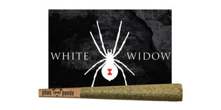 White Widow Product Image