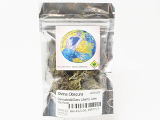 Divina Obscura Product Image