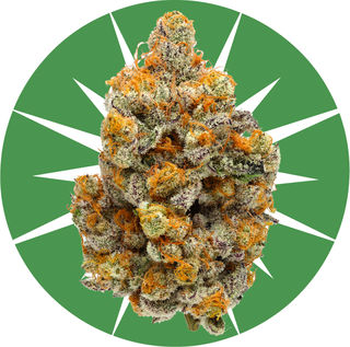Skunk Hero Product Image