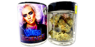 Weird Science Platinum Line Product Image