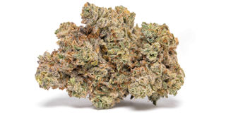 GG #4 Product Image