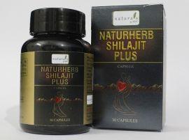 Natuherbs Shilajit Plus