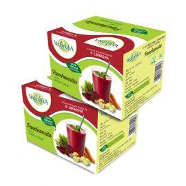 Vedantika Herbals Panchamrita Energy drink (combo pack) - 500g