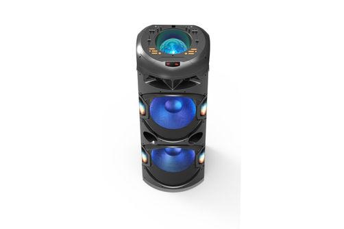 Edison Professional 6000W Party Speaker