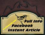 book instant article