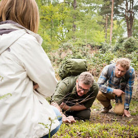 Walk in the Woods with Ray Mears