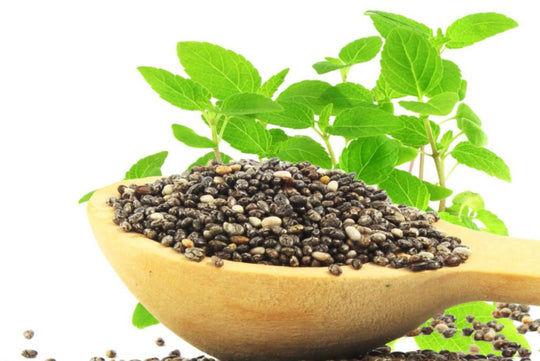 Chia Seeds FAQs