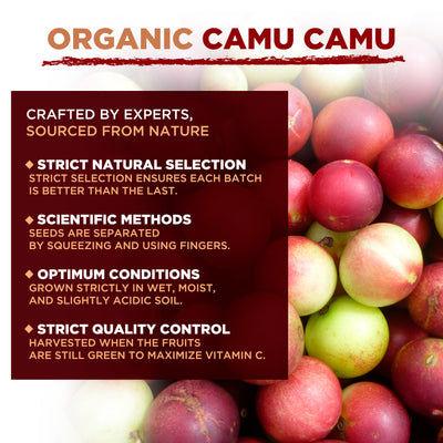 Polvo de Camu Camu orgánico