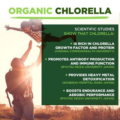 Polvo De Clorela De Pared Celular Rota Orgánica