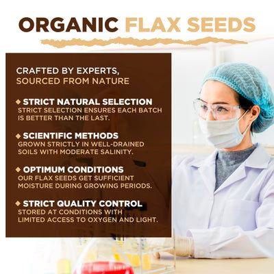 Semillas de lino orgánico