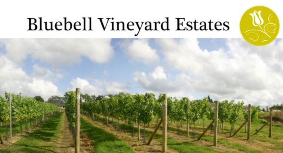 English Sparkling Bluebell Vineyard Estates Hindleap