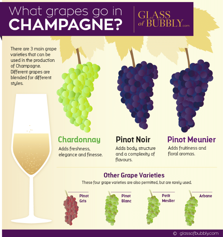 What Grapes go in Champagne