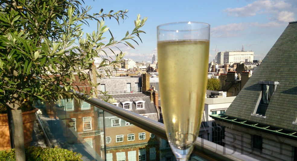 Enjoy a Glass of Bubbly at a London Rooftop Bar