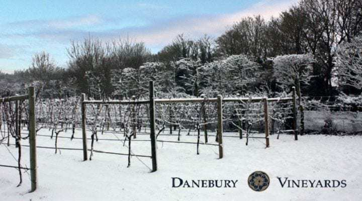 Danebury Vineyards