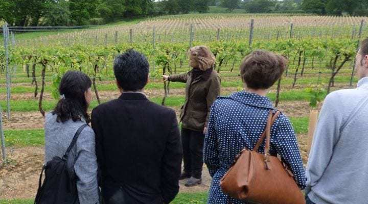 First English Wine Tasting Tour