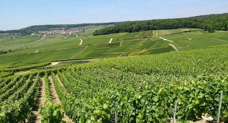 Champagne_region