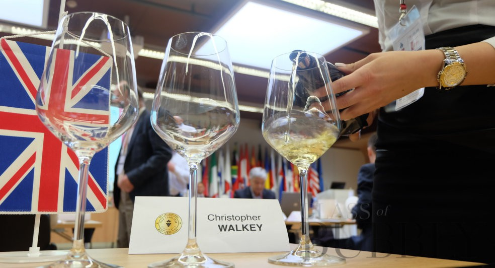 Glass of Bubbly Judging at 60th Ljubljana International Wine Competition