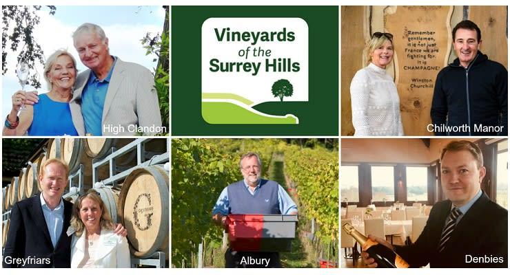 Vineyards_of_the_Surrey_Hills