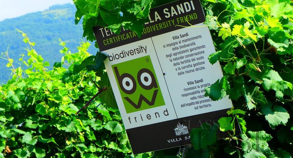 Villa Sandi Prosecco Biodiversity