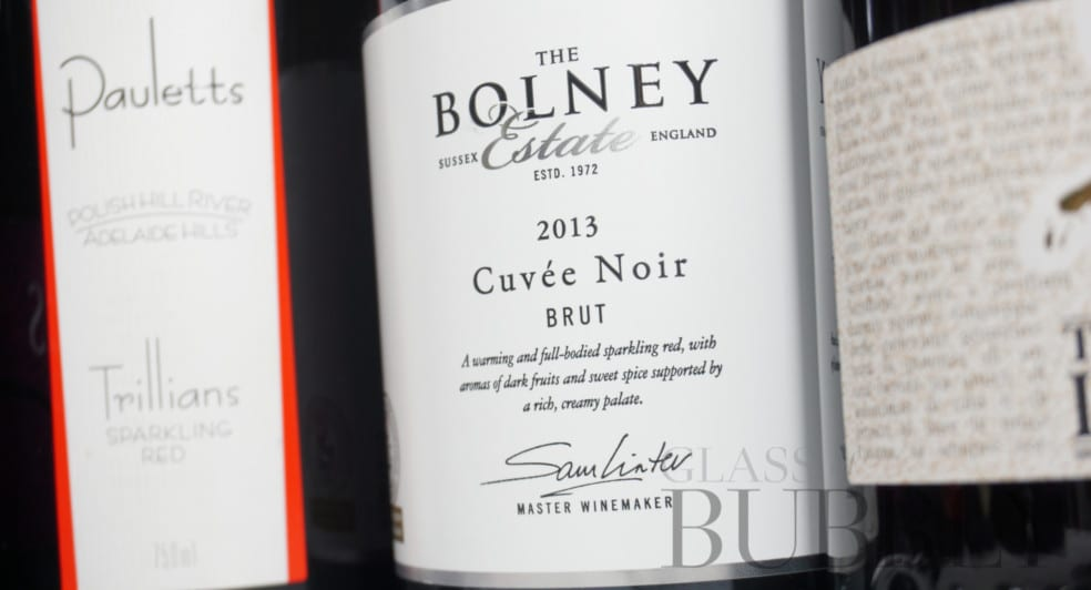 The Bolney Estate 2013 Cuvée Noir red sparkling wine