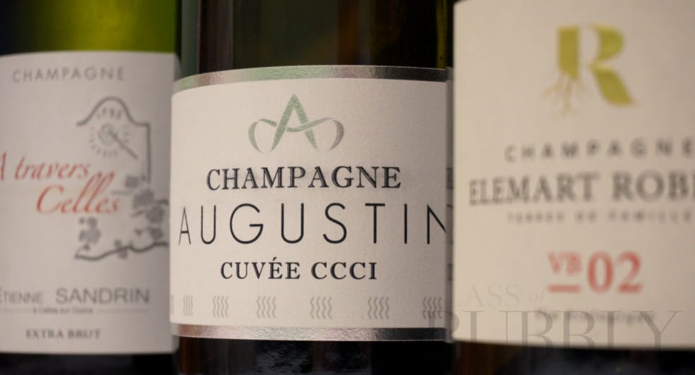 Grower Champagnes from Champagne Hub