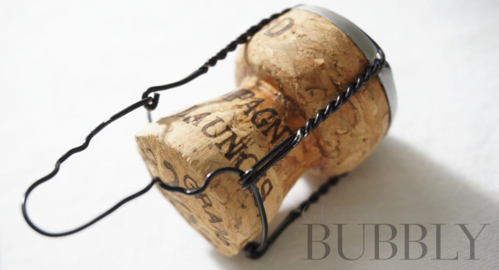 Champagne Paul Launois Mono Chrome
