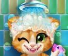 Baño de gatito oxidado