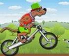 Bicicleta Scooby Doo