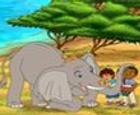 Go Diego Go de safari