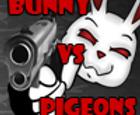 Conejito vs palomas