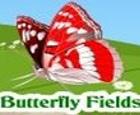 Campos de mariposas