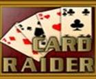 Tarjeta Raider