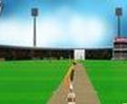 Cricket Master